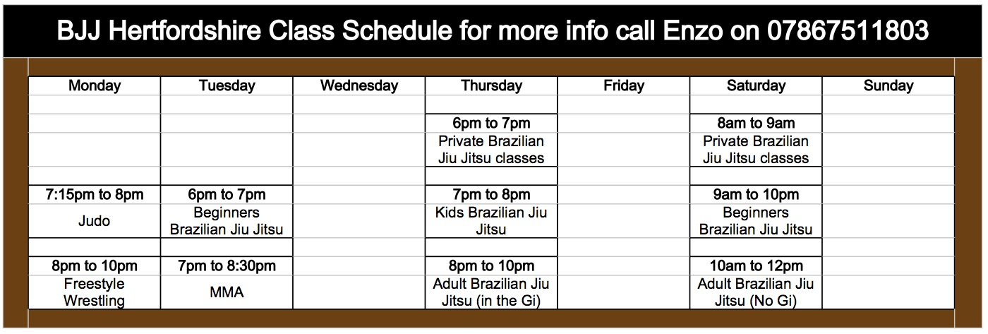 BJJ Hertfordshire Class Time Table April 2013 - Sheet1 (1)